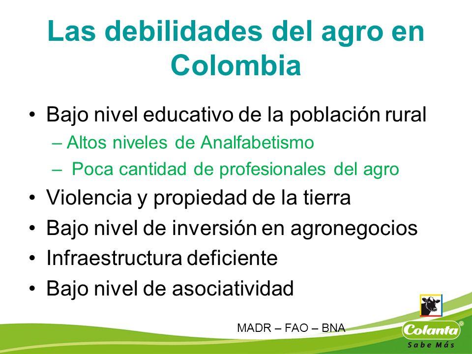 Las debilidades del agro en Colombia Bajo nivel educativo de la población rural –Altos niveles de Analfabetismo – Poca cantidad de profesionales del a
