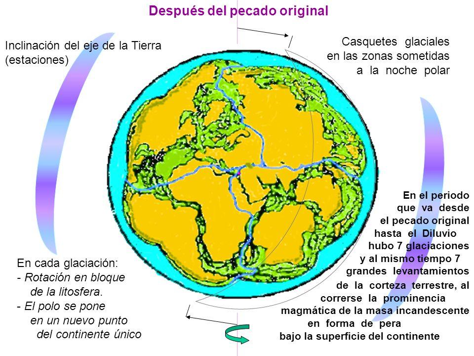 Después del pecado original Inclinación del eje de la Tierra (estaciones) Casquetes glaciales en las zonas sometidas a la noche polar En cada glaciación: - Rotación en bloque..