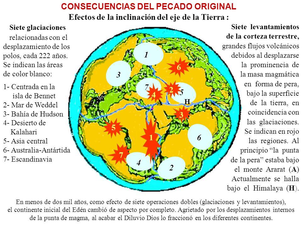 3 2 1 4 5 6 7 1 A 2 3 4 5 6 7 CONSECUENCIAS DEL PECADO ORIGINAL Efectos de la inclinación del eje de la Tierra : Siete glaciaciones.