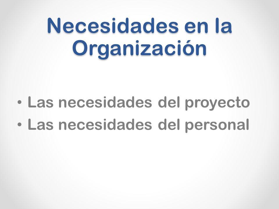 Necesidades en la Organización Las necesidades del proyecto Las necesidades del personal