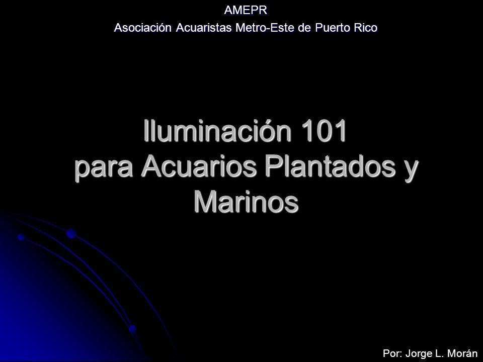 Iluminación 101 para Acuarios Plantados y Marinos AMEPR Asociación Acuaristas Metro-Este de Puerto Rico Por: Jorge L. Morán