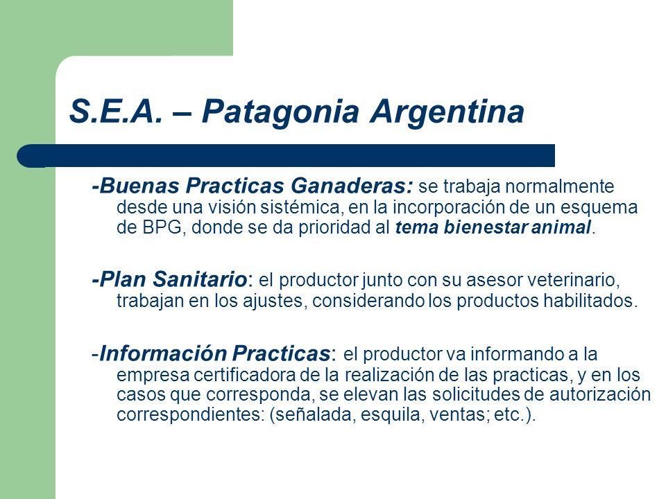 S.E.A. – Patagonia Argentina -Buenas Practicas Ganaderas: se trabaja normalmente desde una visión sistémica, en la incorporación de un esquema de BPG,
