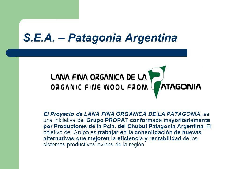 S.E.A. – Patagonia Argentina El Proyecto de LANA FINA ORGANICA DE LA PATAGONIA, es una iniciativa del Grupo PROPAT conformada mayoritariamente por Pro