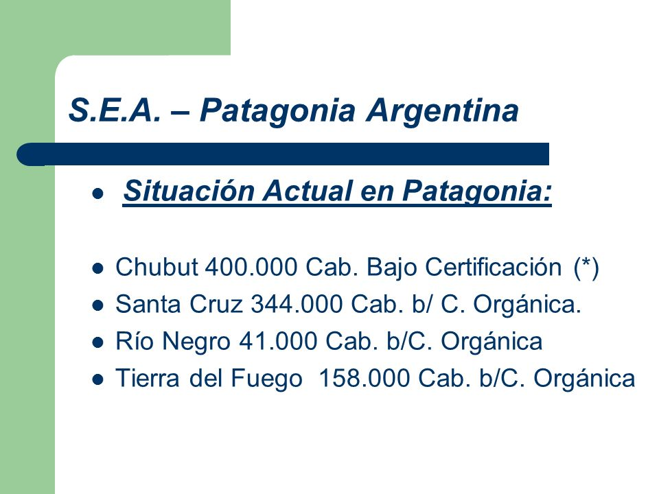S.E.A. – Patagonia Argentina Situación Actual en Patagonia: Chubut 400.000 Cab. Bajo Certificación (*) Santa Cruz 344.000 Cab. b/ C. Orgánica. Río Neg