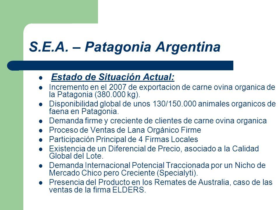 S.E.A. – Patagonia Argentina Estado de Situación Actual: Incremento en el 2007 de exportacion de carne ovina organica de la Patagonia (380.000 kg). Di