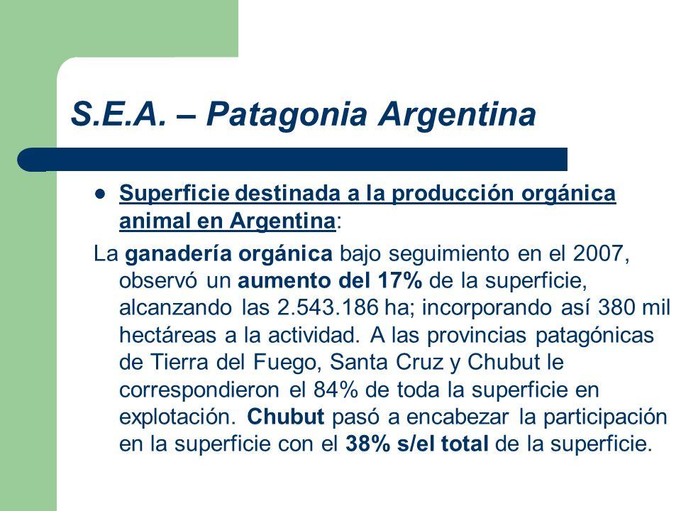 S.E.A. – Patagonia Argentina Superficie destinada a la producción orgánica animal en Argentina: La ganadería orgánica bajo seguimiento en el 2007, obs
