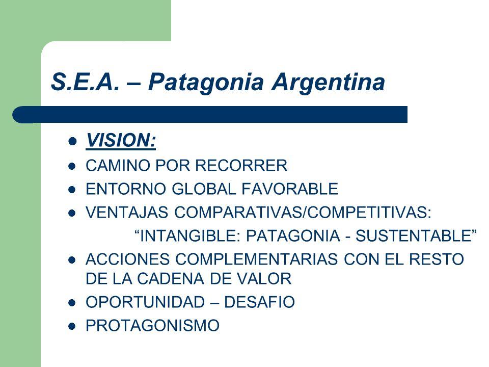 S.E.A. – Patagonia Argentina VISION: CAMINO POR RECORRER ENTORNO GLOBAL FAVORABLE VENTAJAS COMPARATIVAS/COMPETITIVAS: INTANGIBLE: PATAGONIA - SUSTENTA