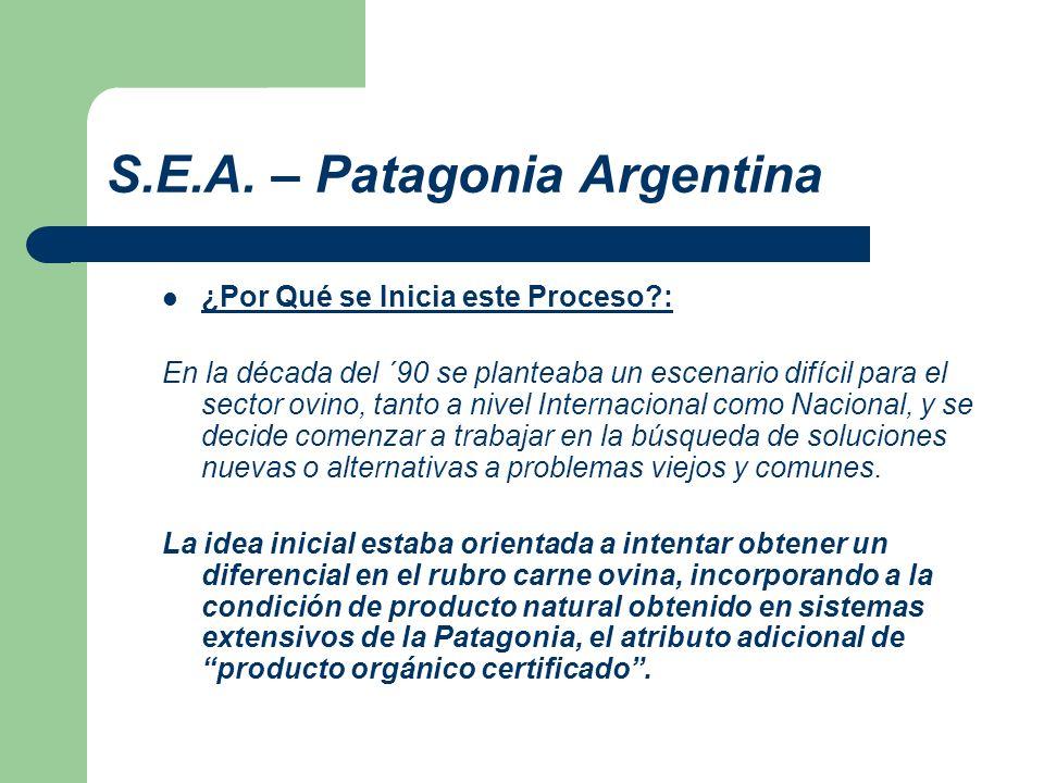 S.E.A. – Patagonia Argentina ¿Por Qué se Inicia este Proceso?: En la década del ´90 se planteaba un escenario difícil para el sector ovino, tanto a ni