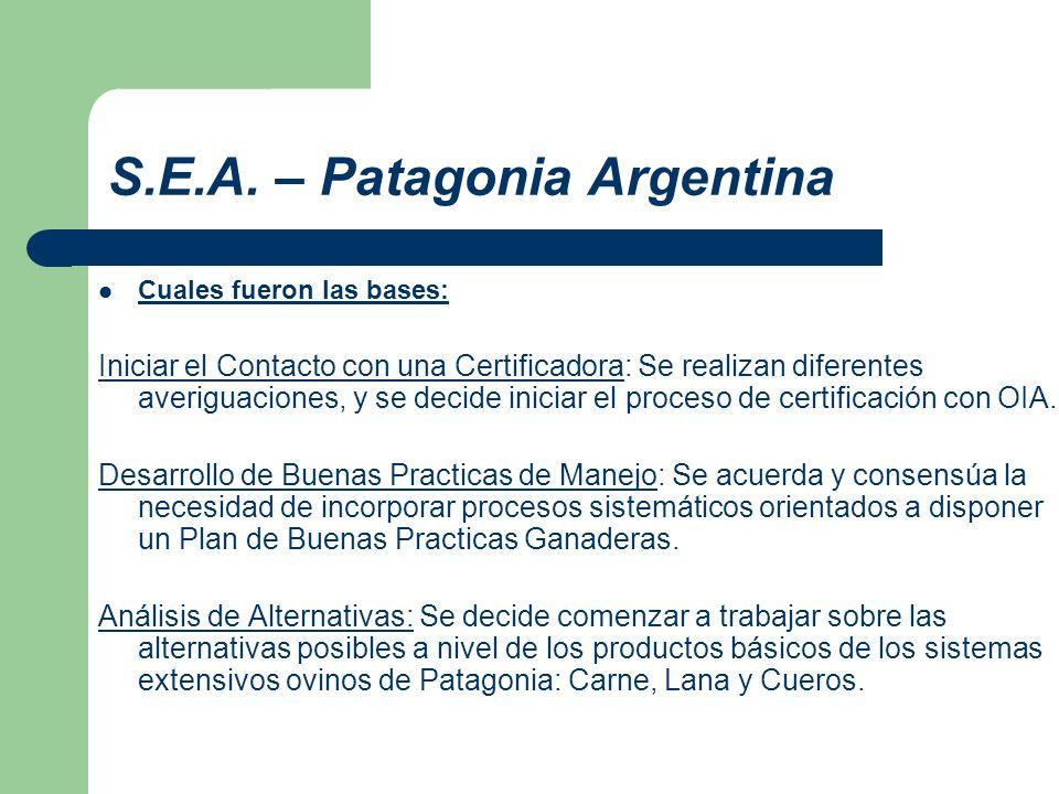 S.E.A. – Patagonia Argentina Cuales fueron las bases: Iniciar el Contacto con una Certificadora: Se realizan diferentes averiguaciones, y se decide in
