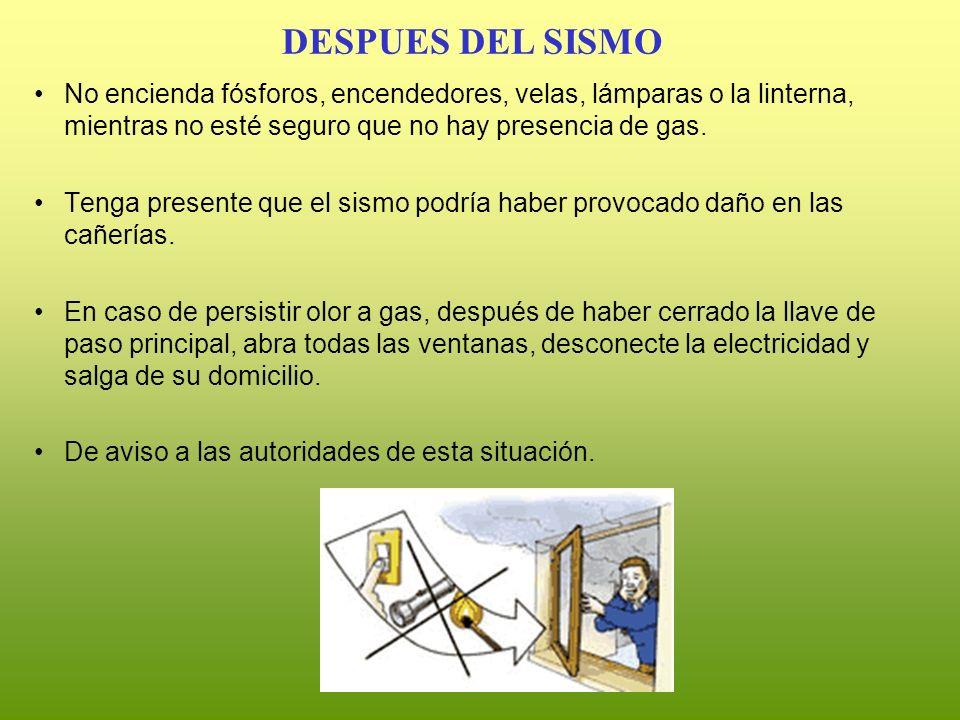No encienda fósforos, encendedores, velas, lámparas o la linterna, mientras no esté seguro que no hay presencia de gas. Tenga presente que el sismo po