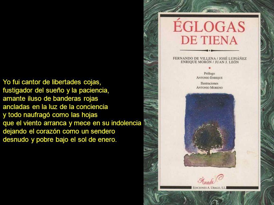 Reunimos en esta obra el material recogido durante años de investigación de campo y de indagación en la extensa bibliografía existente sobre las distintas formas de expresión poética en el lenguaje popular