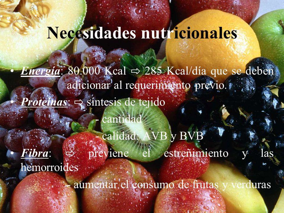 Necesidades nutricionales Energía: 80.000 Kcal 285 Kcal/día que se deben adicionar al requerimiento previo. Proteínas: síntesis de tejido - cantidad -
