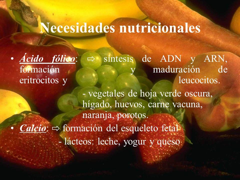Necesidades nutricionales Ácido fólico: síntesis de ADN y ARN, formación y maduración de eritrocitos y leucocitos. - vegetales de hoja verde oscura, h