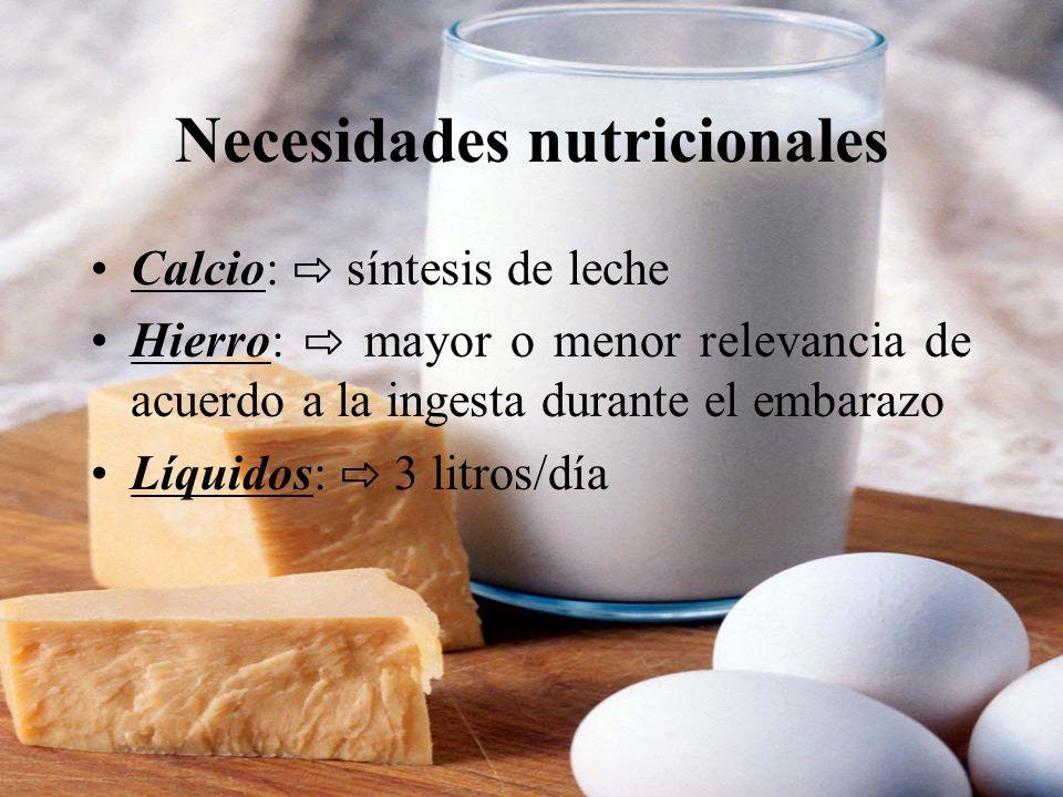 Necesidades nutricionales Calcio: síntesis de leche Hierro: mayor o menor relevancia de acuerdo a la ingesta durante el embarazo Líquidos: 3 litros/dí