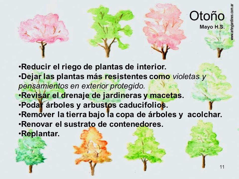 11 Otoño Mayo H.S. Reducir el riego de plantas de interior. Dejar las plantas más resistentes como violetas y pensamientos en exterior protegido. Revi