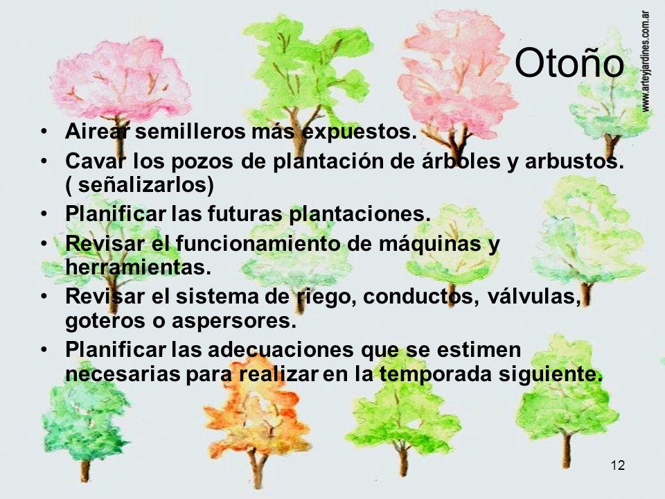 12 Otoño Airear semilleros más expuestos. Cavar los pozos de plantación de árboles y arbustos. ( señalizarlos) Planificar las futuras plantaciones. Re