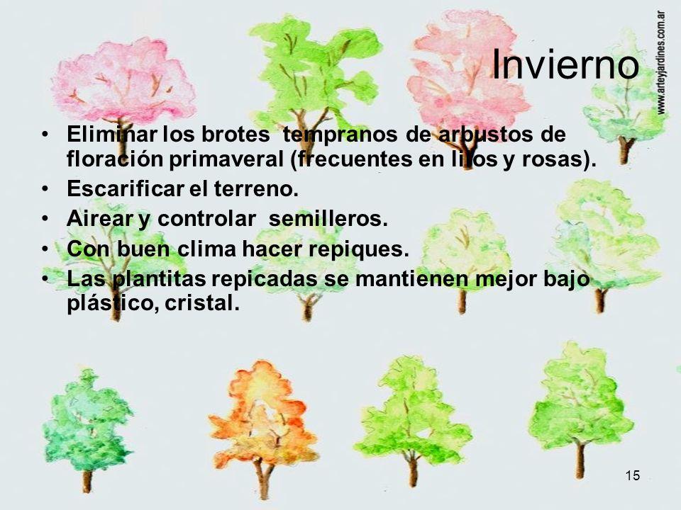 15 Invierno Eliminar los brotes tempranos de arbustos de floración primaveral (frecuentes en lilos y rosas). Escarificar el terreno. Airear y controla
