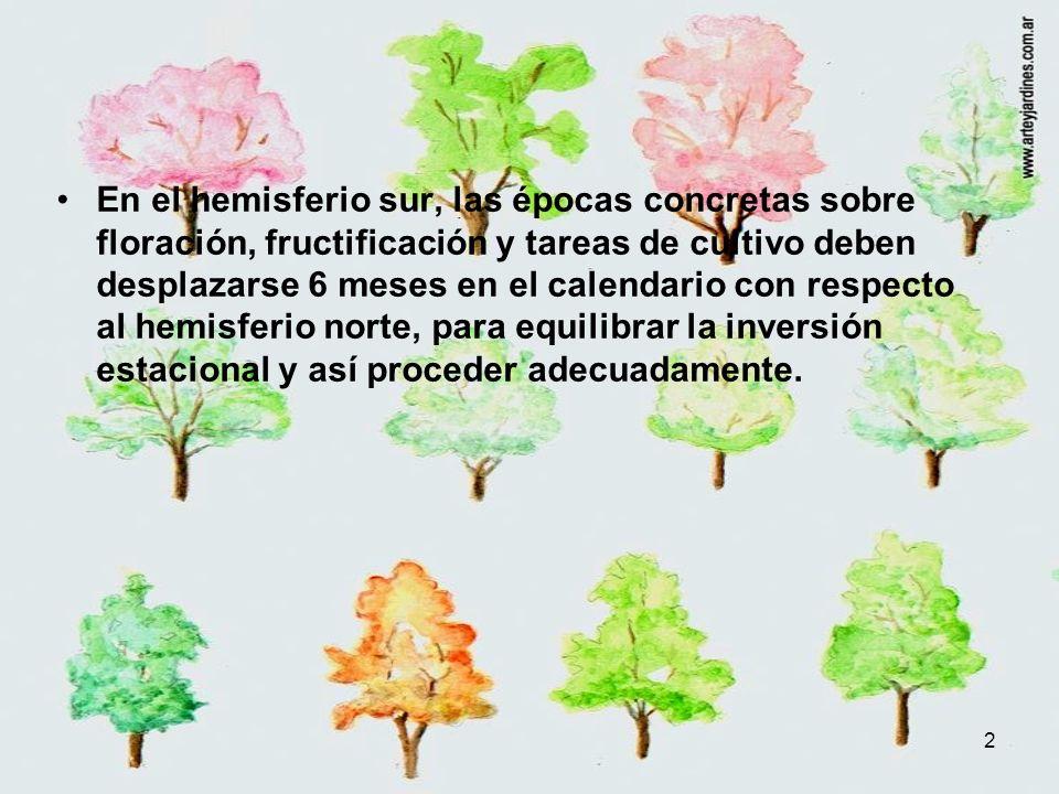 3 A modo de ejemplo: En el hemisferio sur la primavera corresponde al otoño del hemisferio norte.
