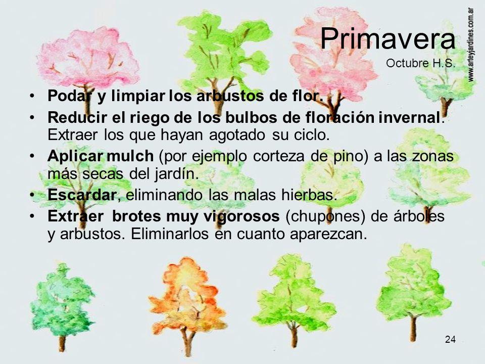 24 Primavera Octubre H.S. Podar y limpiar los arbustos de flor. Reducir el riego de los bulbos de floración invernal. Extraer los que hayan agotado su