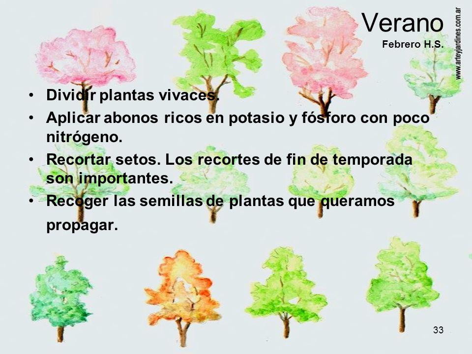 33 Verano Febrero H.S. Dividir plantas vivaces. Aplicar abonos ricos en potasio y fósforo con poco nitrógeno. Recortar setos. Los recortes de fin de t