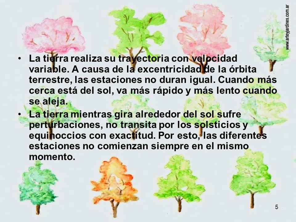 16 Invierno Julio H.S.Podar y plantar árboles y arbustos caducifolios.