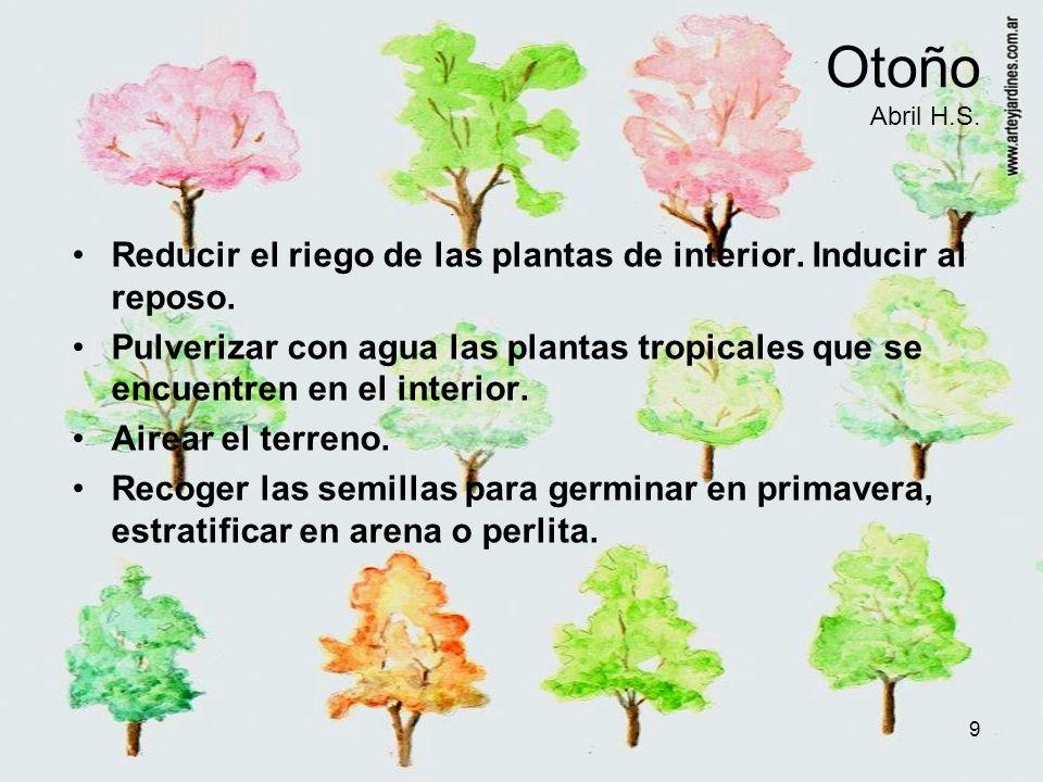 9 Otoño Abril H.S. Reducir el riego de las plantas de interior. Inducir al reposo. Pulverizar con agua las plantas tropicales que se encuentren en el