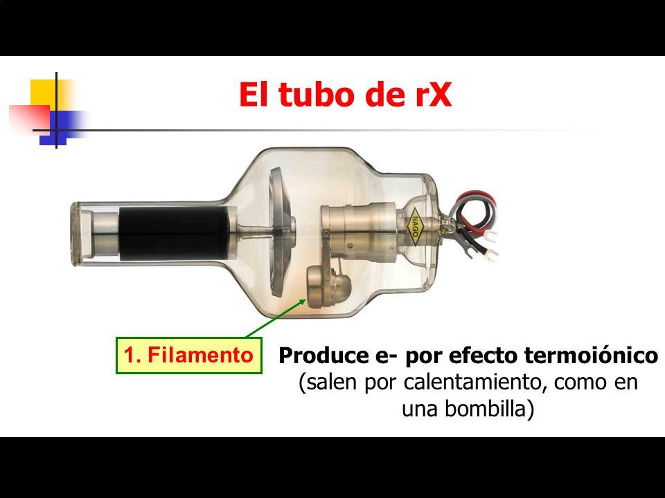 1. Filamento El tubo de rX Produce e- por efecto termoiónico (salen por calentamiento, como en una bombilla)