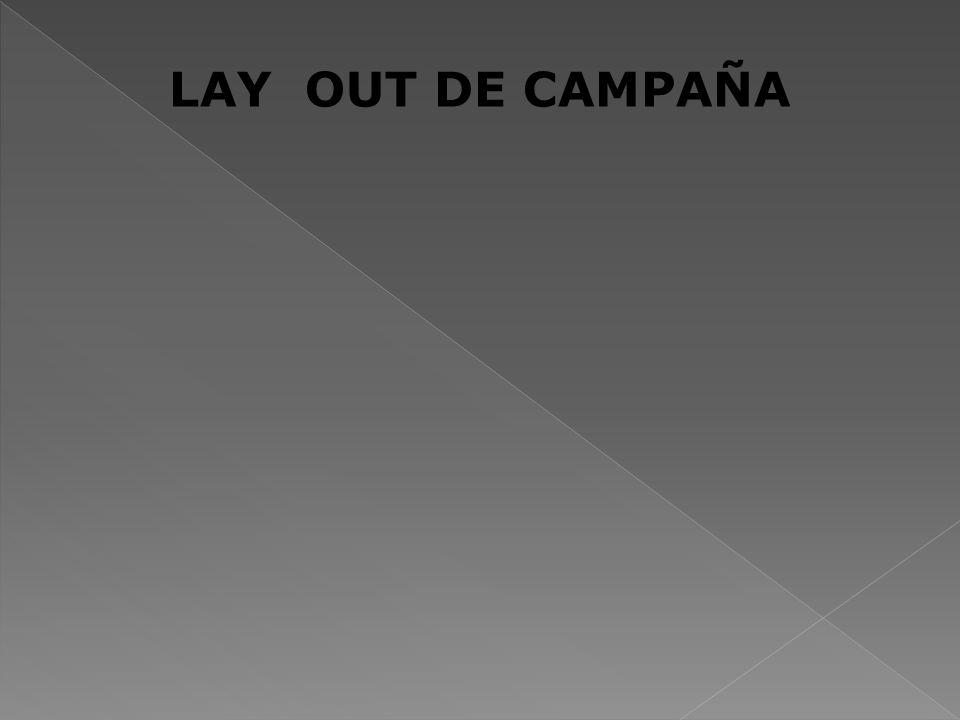 LAY OUT DE CAMPAÑA