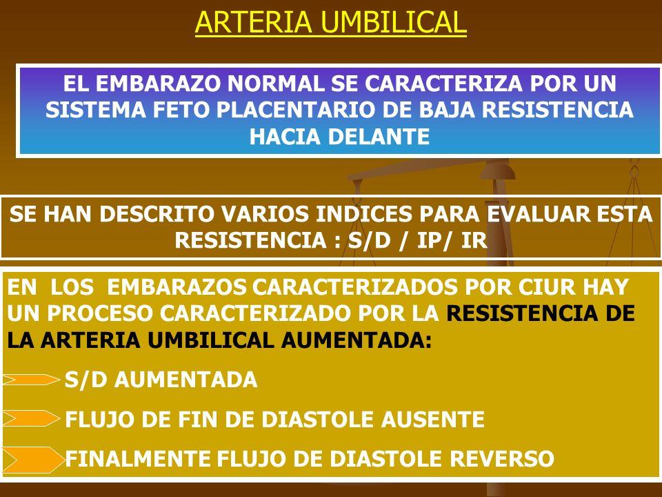 ARTERIA UMBILICAL EL EMBARAZO NORMAL SE CARACTERIZA POR UN SISTEMA FETO PLACENTARIO DE BAJA RESISTENCIA HACIA DELANTE SE HAN DESCRITO VARIOS INDICES P