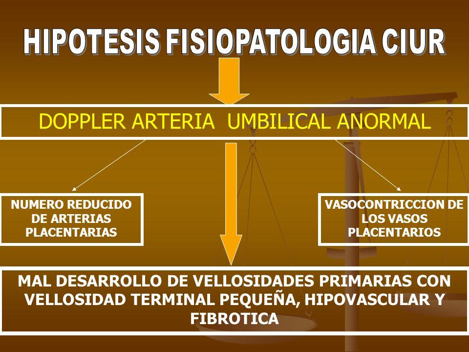 DOPPLER ARTERIA UMBILICAL ANORMAL NUMERO REDUCIDO DE ARTERIAS PLACENTARIAS VASOCONTRICCION DE LOS VASOS PLACENTARIOS MAL DESARROLLO DE VELLOSIDADES PR