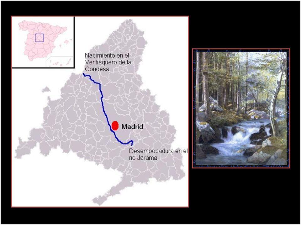 El Manzanares es un río del centro de España, afluente por la derecha del Jarama, que, a su vez, es tributario del Tajo. Este río, que discurre íntegr