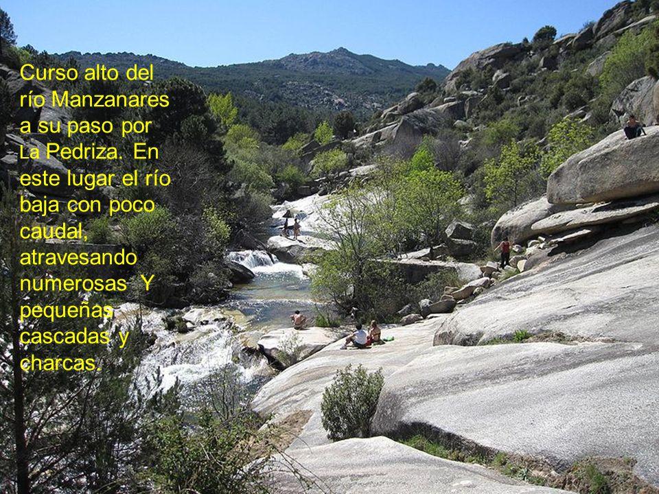 Curso alto del río Manzanares a su paso por La Pedriza.