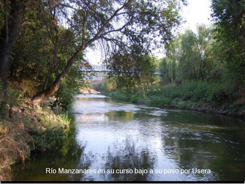 El Parque Lineal del Manzanares es un espacio natural vertebrado por el río Manzanares desde su cruce con la M-30 hasta su desembocadura en el Río Jar