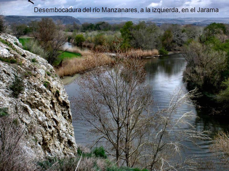 Calle 30, a la vera del Manzanares CREPÚSCULO, CON EL ESTADIO DEL MANZANARES AL FONDO. Parque Regional del Sureste Río Manzanares, cerca de la desembo