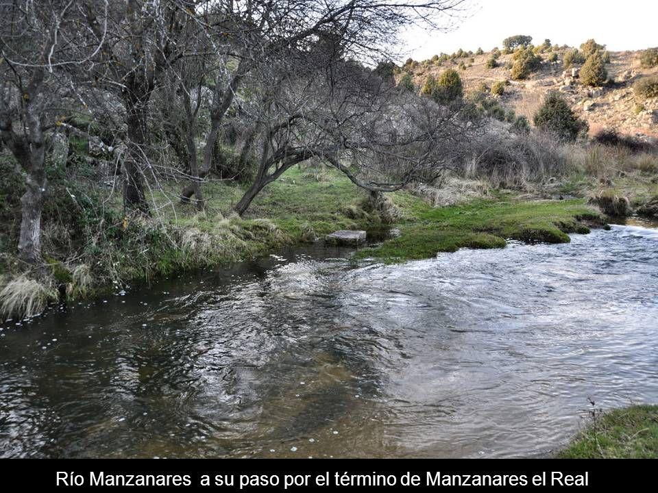 Río Manzanares a su paso por el término de Manzanares el Real