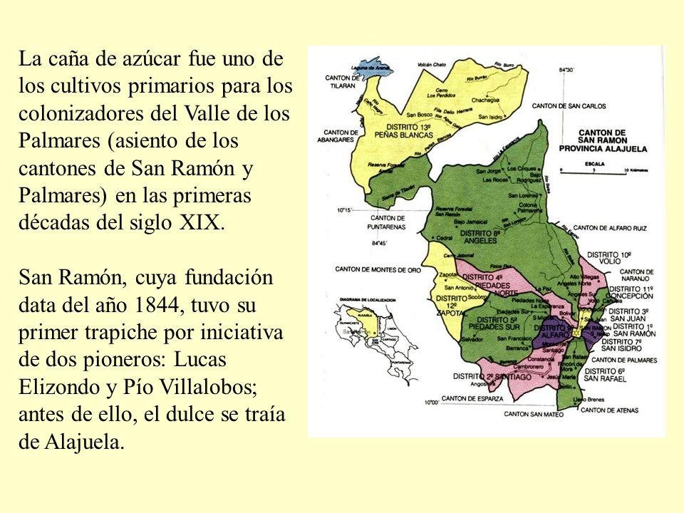 La caña de azúcar fue uno de los cultivos primarios para los colonizadores del Valle de los Palmares (asiento de los cantones de San Ramón y Palmares) en las primeras décadas del siglo XIX.
