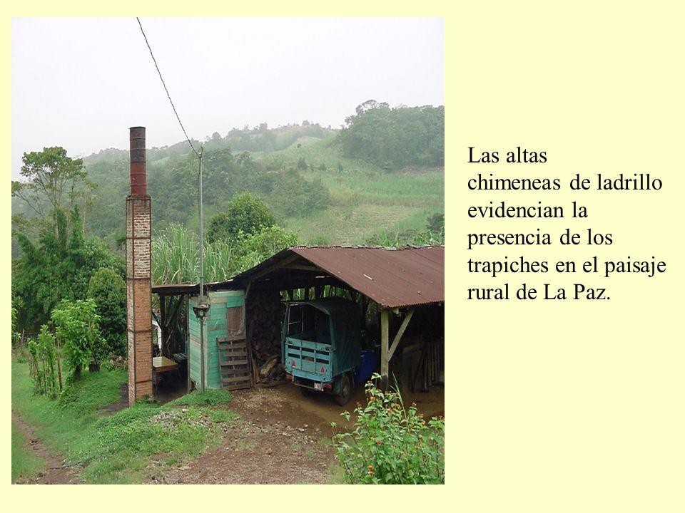 Las altas chimeneas de ladrillo evidencian la presencia de los trapiches en el paisaje rural de La Paz.