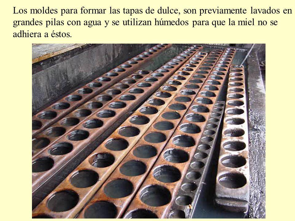 Los moldes para formar las tapas de dulce, son previamente lavados en grandes pilas con agua y se utilizan húmedos para que la miel no se adhiera a éstos.