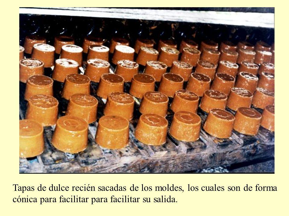 Tapas de dulce recién sacadas de los moldes, los cuales son de forma cónica para facilitar para facilitar su salida.