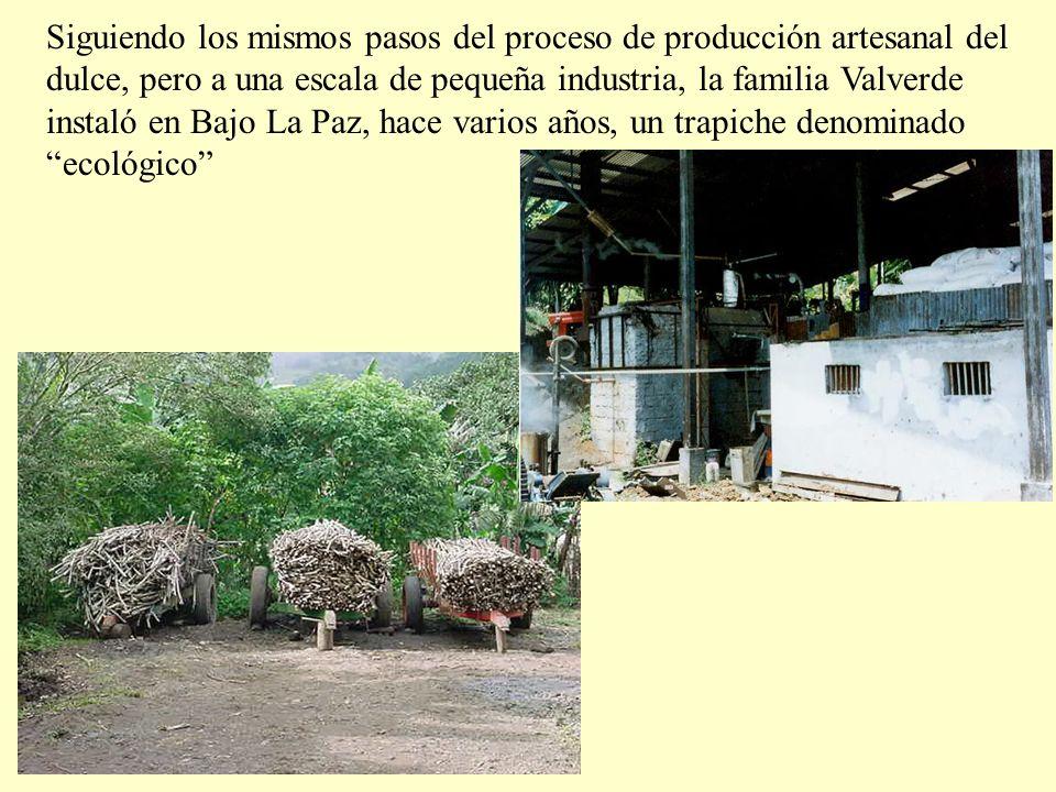 Siguiendo los mismos pasos del proceso de producción artesanal del dulce, pero a una escala de pequeña industria, la familia Valverde instaló en Bajo La Paz, hace varios años, un trapiche denominado ecológico