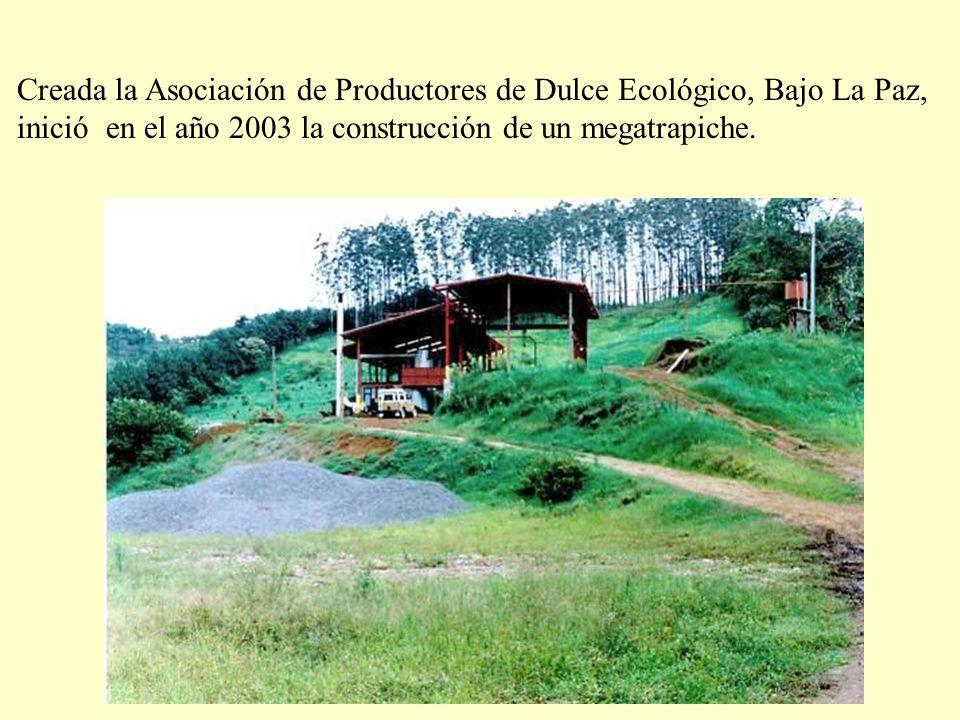 Creada la Asociación de Productores de Dulce Ecológico, Bajo La Paz, inició en el año 2003 la construcción de un megatrapiche.