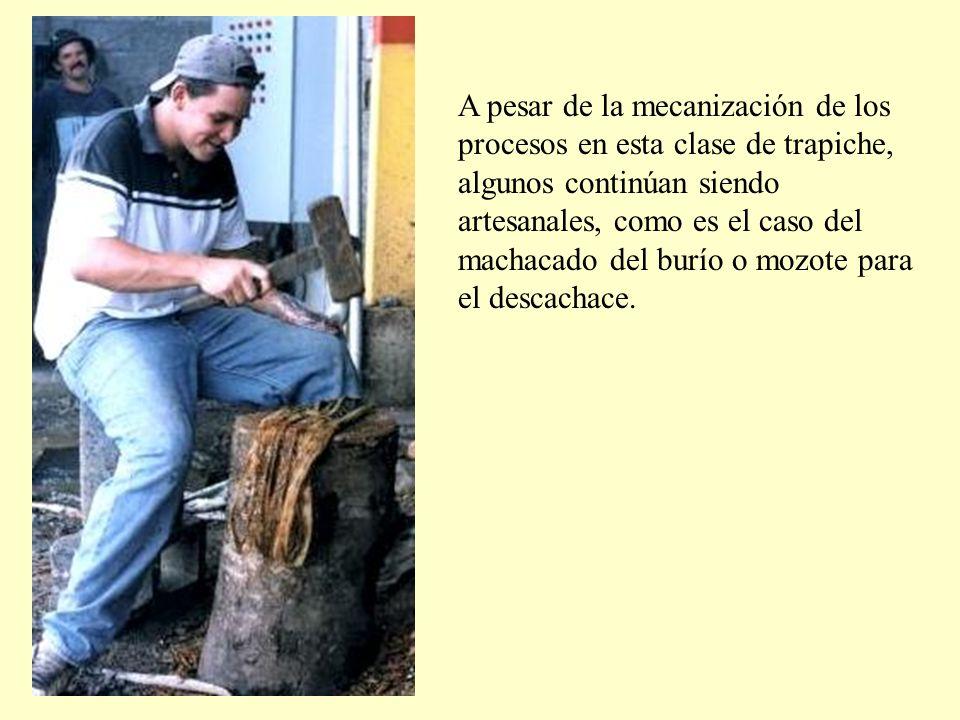 A pesar de la mecanización de los procesos en esta clase de trapiche, algunos continúan siendo artesanales, como es el caso del machacado del burío o mozote para el descachace.