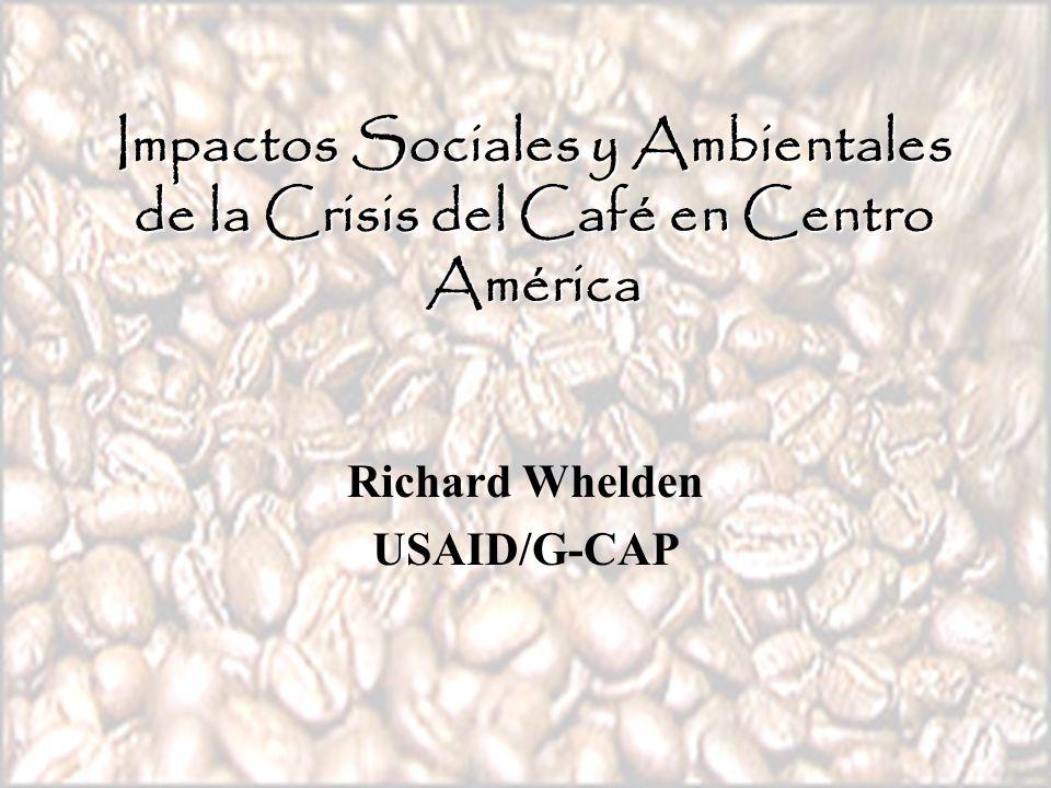 Impactos Sociales y Ambientales de la Crisis del Café en Centro América Richard Whelden USAID/G-CAP