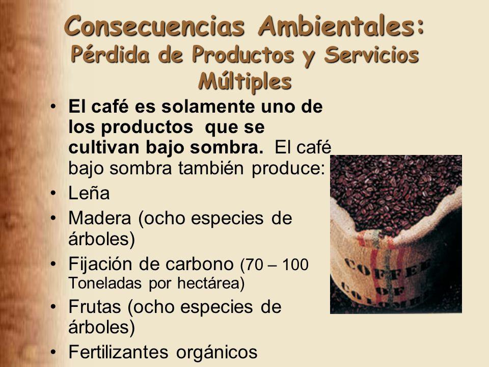 Consecuencias Ambientales: Pérdida de Productos y Servicios Múltiples El café es solamente uno de los productos que se cultivan bajo sombra.