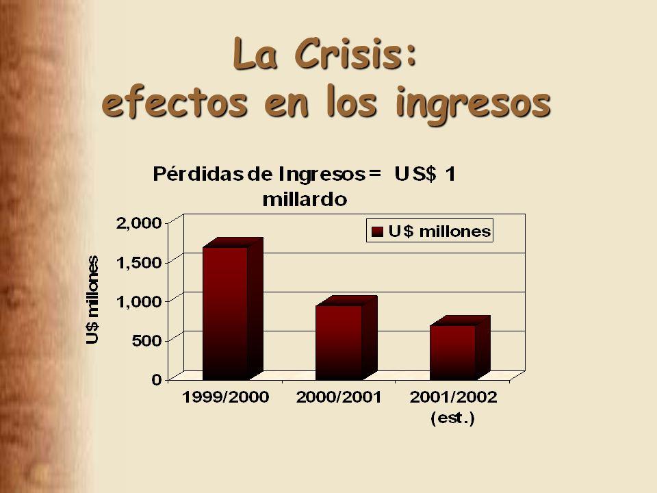 La Crisis: efectos en los ingresos