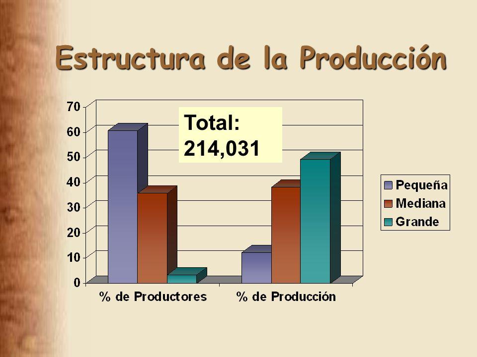 Estructura de la Producción Total: 214,031