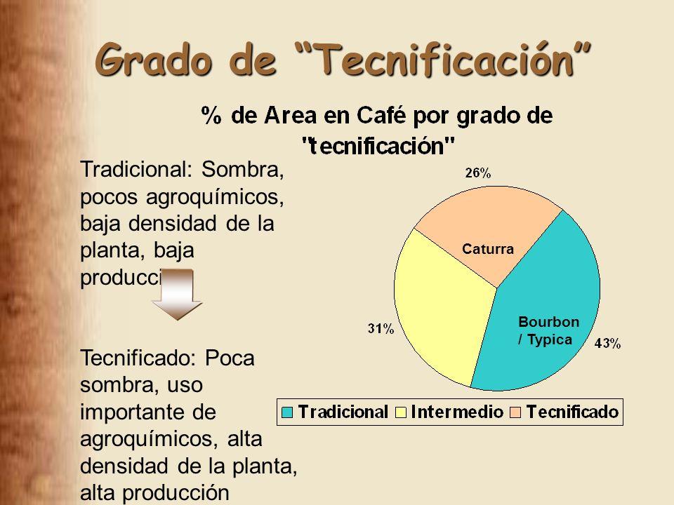 Grado de Tecnificación Tradicional: Sombra, pocos agroquímicos, baja densidad de la planta, baja producción Tecnificado: Poca sombra, uso importante de agroquímicos, alta densidad de la planta, alta producción Bourbon / Typica Caturra