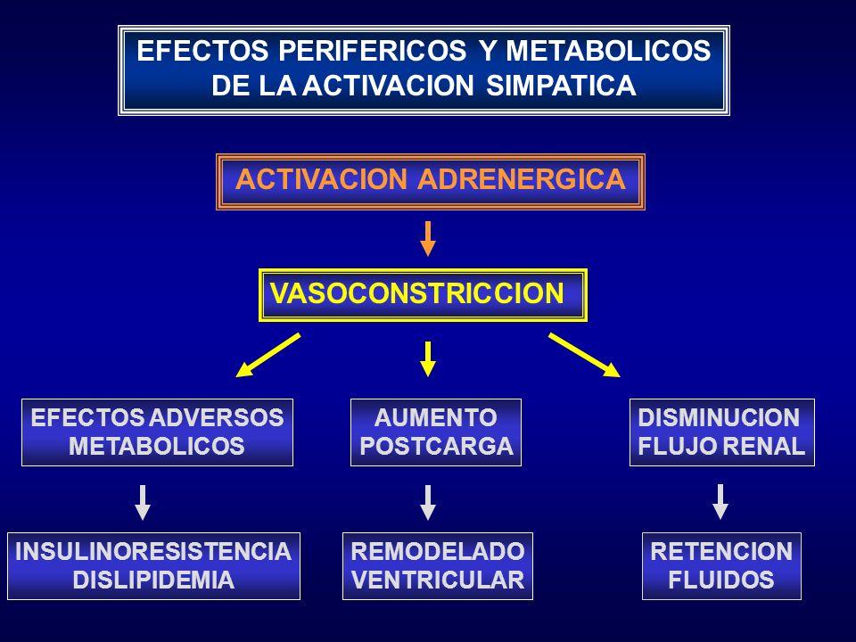 EFECTOS PERIFERICOS Y METABOLICOS DE LA ACTIVACION SIMPATICA ACTIVACION ADRENERGICA EFECTOS ADVERSOS METABOLICOS AUMENTO POSTCARGA DISMINUCION FLUJO R