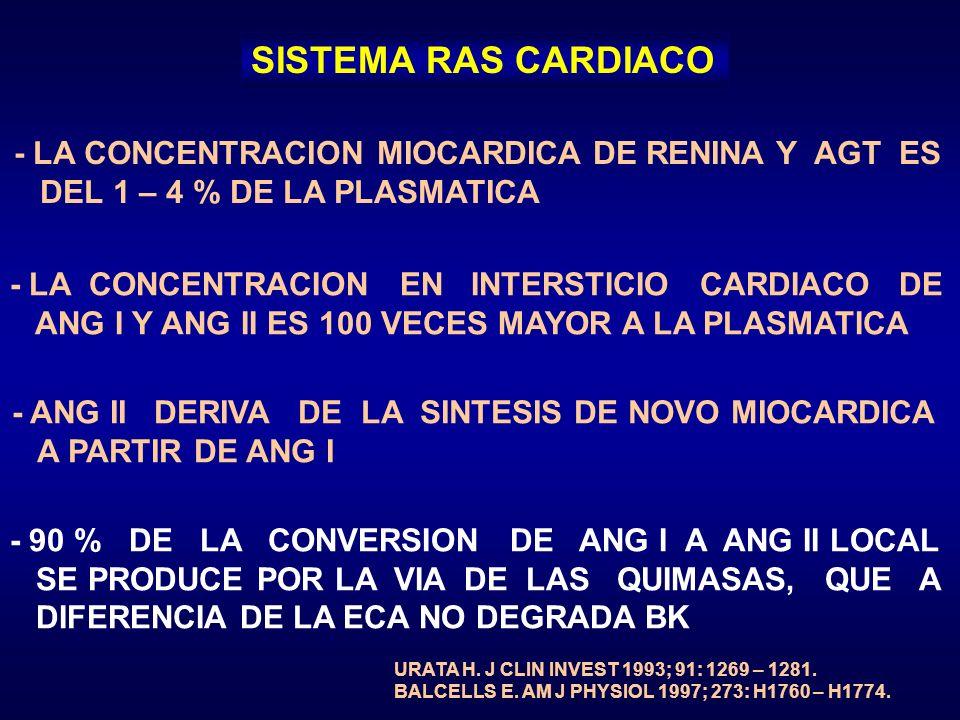 SISTEMA RAS CARDIACO - LA CONCENTRACION MIOCARDICA DE RENINA Y AGT ES DEL 1 – 4 % DE LA PLASMATICA - LA CONCENTRACION EN INTERSTICIO CARDIACO DE ANG I