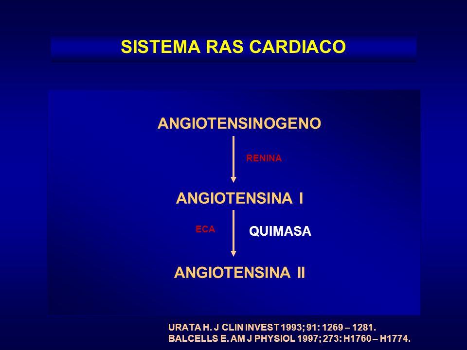 ANGIOTENSINOGENO ANGIOTENSINA I ANGIOTENSINA II SISTEMA RAS CARDIACO RENINA ECA QUIMASA URATA H. J CLIN INVEST 1993; 91: 1269 – 1281. BALCELLS E. AM J